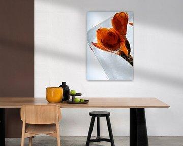 Orange Freesie in Eis 1 von Marc Heiligenstein