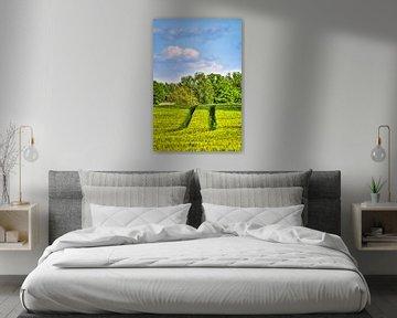 Blick über grüne Felder auf Bäume am Horizont. von Michaela Bechinie