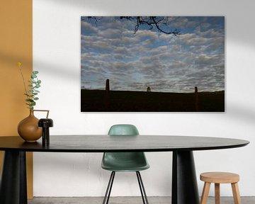 Himmel voller Wolken von Susanne Seidel