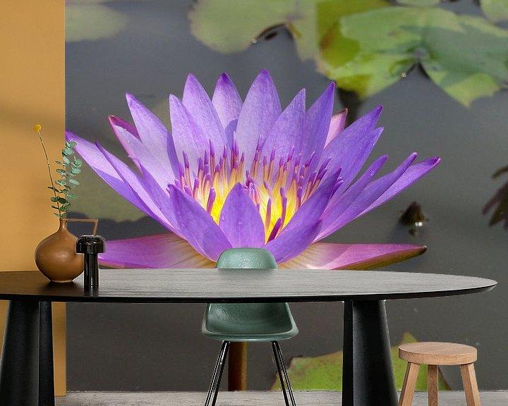 Sfeerimpressie behang: Lotusbloem violet van Lotte Veldt
