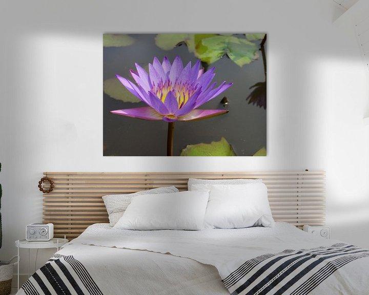 Sfeerimpressie: Lotusbloem violet van Lotte Veldt
