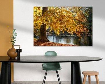 Herbst  in den Bremer Wallanlagen, Deutschland, Europa von Torsten Krüger