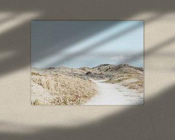 Duinen | Landschap | Zee | Zeeland | Holland van Stories by Pien