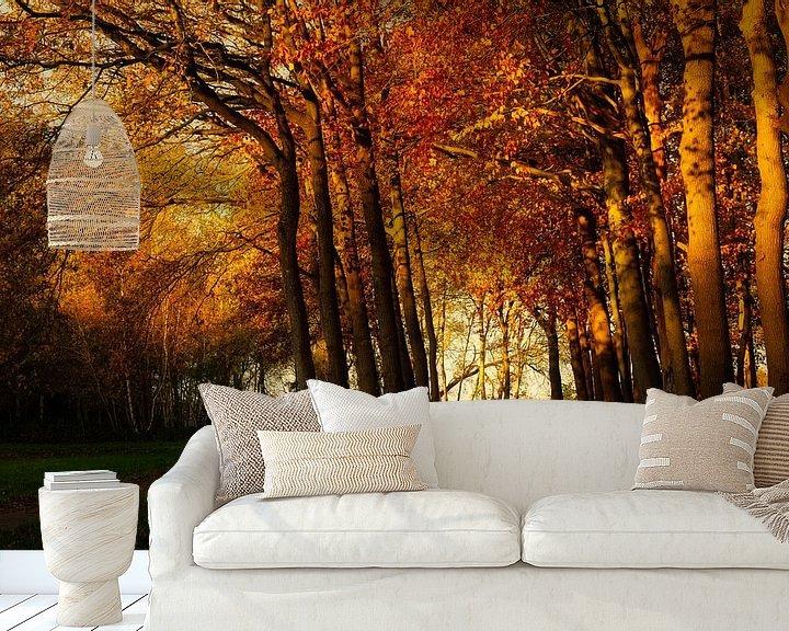 Sfeerimpressie behang: Grote Esweg van Anneke Hooijer