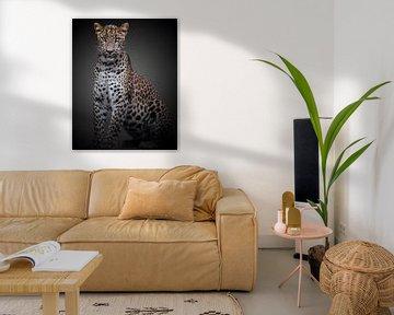 Panther mit einer Haltung von ilona van Bakkum