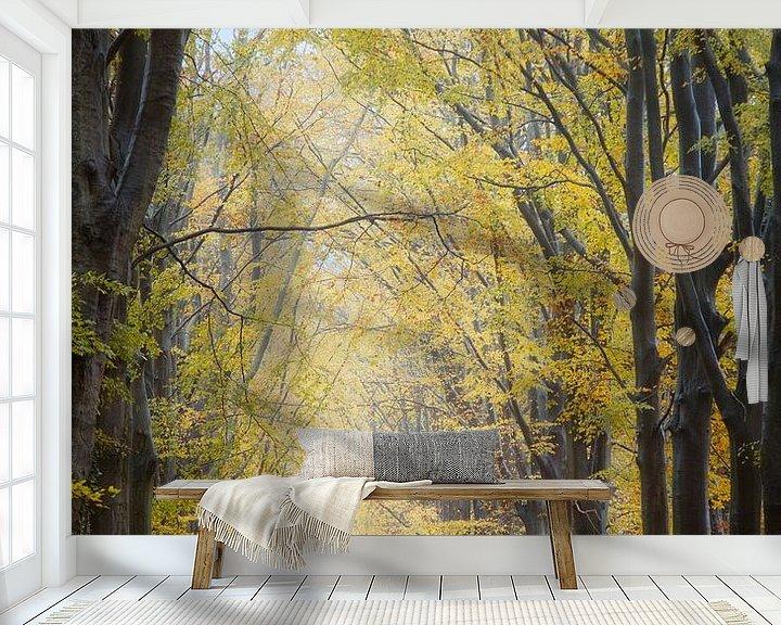 Sfeerimpressie behang: Herfstlaan met fietser. van Anneke Hooijer