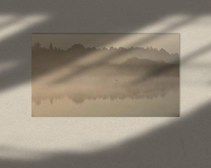 Sfeerimpressie: Ven in de mist. van Anneke Hooijer