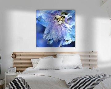 """Nahaufnahme eines blauen Ritterspornes (Rittersporn """"Blauer Vogel"""" ) von Flower and Art"""