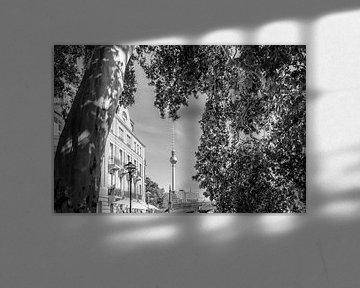 BERLIN Fernsehturm & Monbijoupark | Monochrom von Melanie Viola