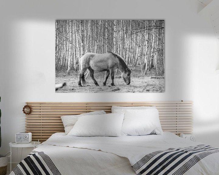 Beispiel: Przewalski-Pferd von Gelein Jansen