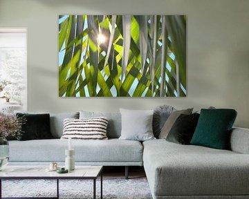 Sonne durch Palmenblätter von Jolanda Berbee