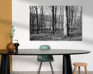 Forest von Peggy Neuteboom
