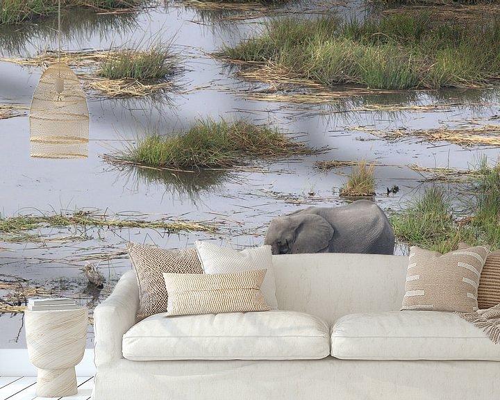 Beispiel fototapete: Elefant von Petervanderlecq