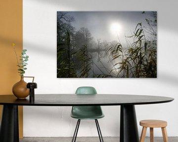 Fahle Sonne mit Reflexion über einem See an einem trüben, bewölkten Wintertag, Schilf im Vordergrund