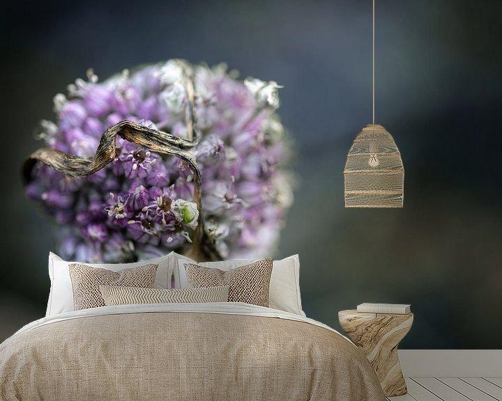 Impression: Fleur de poireau oubliée dans le potager en automne sur un fond flou avec espace de copie, plan rapp sur Maren Winter