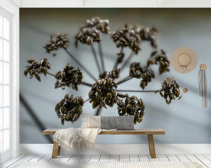 Impression: Tête de livèche (Levisticum officinale) en automne ou en hiver sur un fond gris, concept wabi sabi,  sur Maren Winter