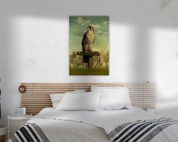 The Falcon van Marja van den Hurk