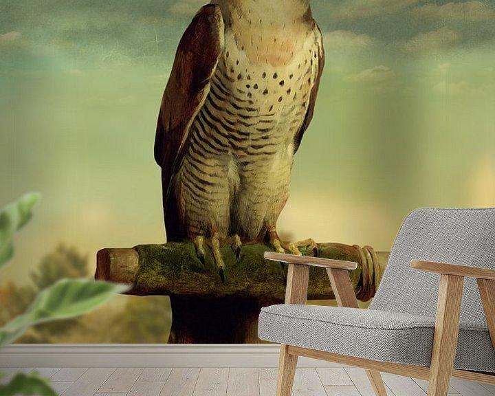 Beispiel fototapete: The Falcon von Marja van den Hurk