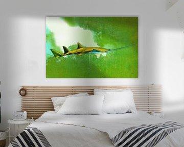 Onderwaterwereld | 05 van Dirk H. Wendt