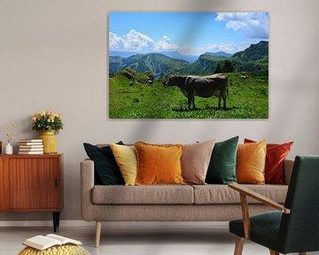 Vaches dans les pâturages de montagne Mont Altissimo montagnes Lac de Garde sur My Footprints