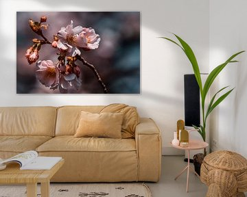 Blüte von Ilse Hoen