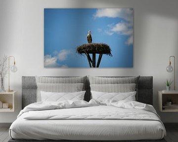 De Ooievaar en zijn Nest van Jesse Lamberink