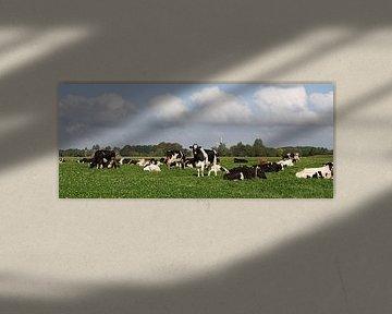 Koeien in de wei von Sandra de Heij