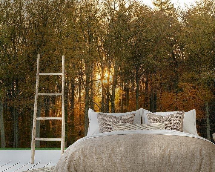 Sfeerimpressie behang: Herfst in het bos van Jeroen Kleiberg