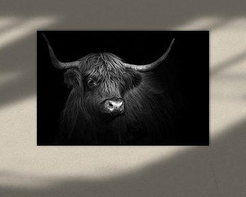 Schottischer Hochlandbewohner von Karel Ton