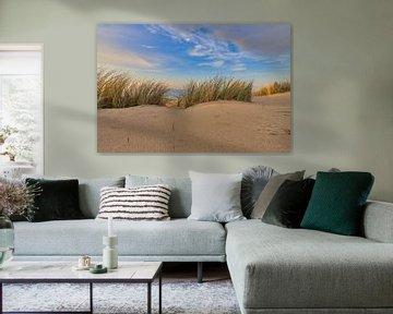 Hollandse Duinen met zicht op de Noordzee van eric van der eijk
