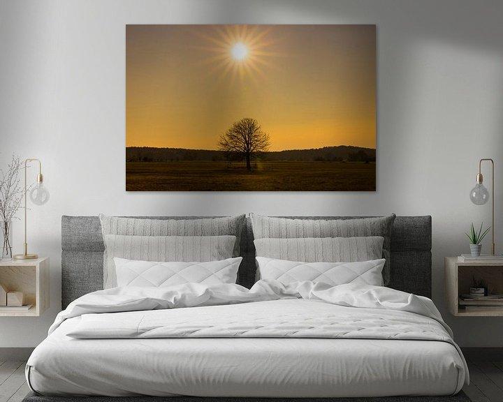 Beispiel: Ein Baum und die Sonne von Frank Herrmann