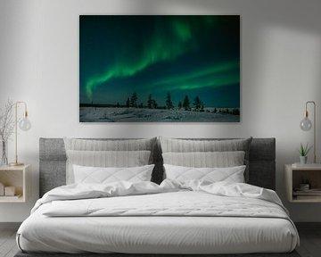 Noorderlicht in Fins Lapland || Poolcirkel, Finland van Suzanne Spijkers