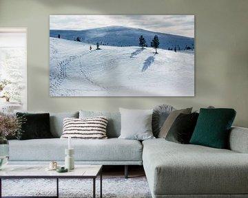Sneeuwlandschap Fins Lapland || Poolcirkel, Finland van Suzanne Spijkers