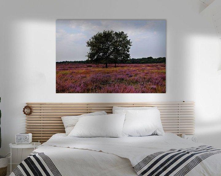 Beispiel: Blühendes Heidekraut in der Veluwe von Robin Verhoef