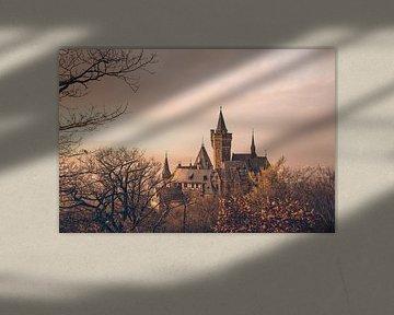 Kasteel Wernigerode zonsondergang en mist