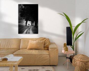 Blik over de Hondsrug van Bert Meijer