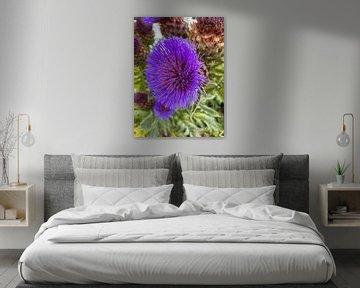 Flower von Marek Bednarek