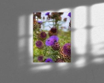 Flower and Bees von Marek Bednarek