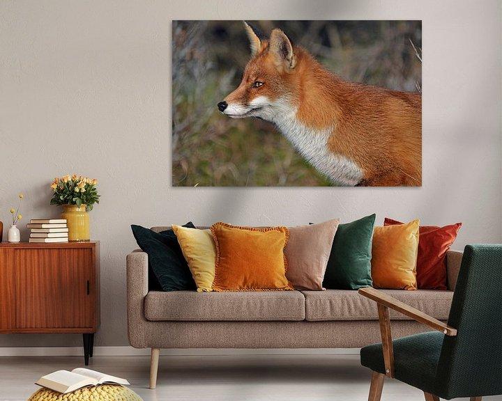 Beispiel: Ein Fuchs in den Dünen der Amsterdamer Wasserversorgung von JTravel