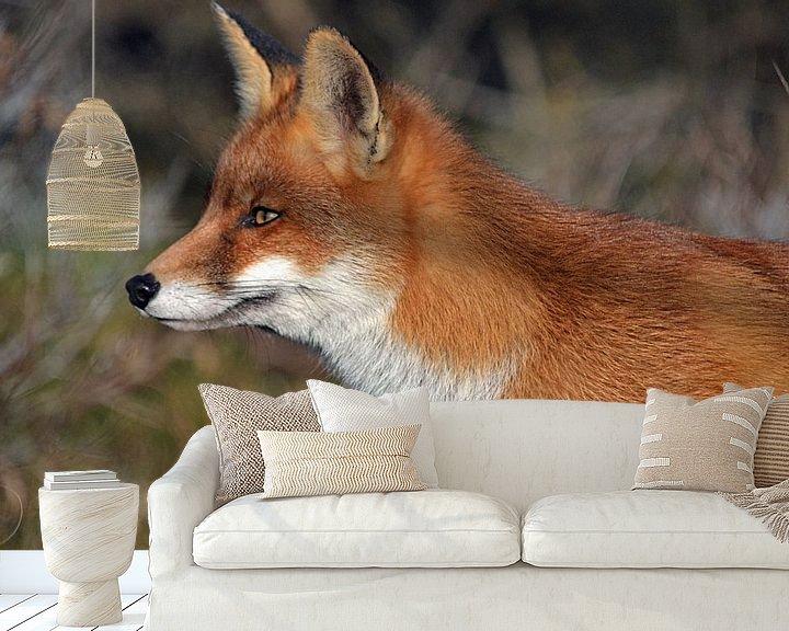 Beispiel fototapete: Ein Fuchs in den Dünen der Amsterdamer Wasserversorgung von JTravel
