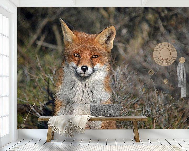 Sfeerimpressie behang: Een vos van JTravel
