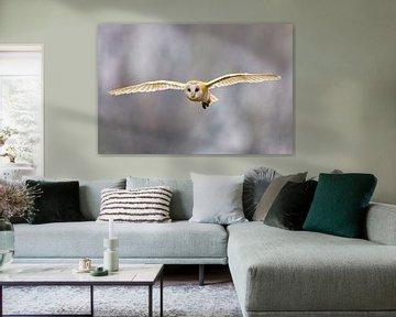 Vliegende Kerkuil (Tyto alba) van Beschermingswerk voor aan uw muur