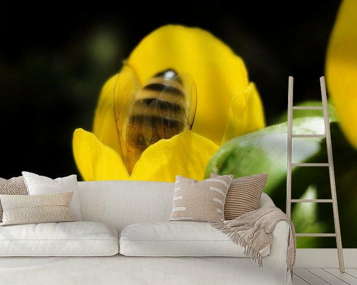 Beispiel fototapete: Biene in einer Frühlingsblume von Toni Stauche