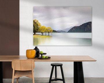 De eerste herfstkleuren van Antwan Janssen