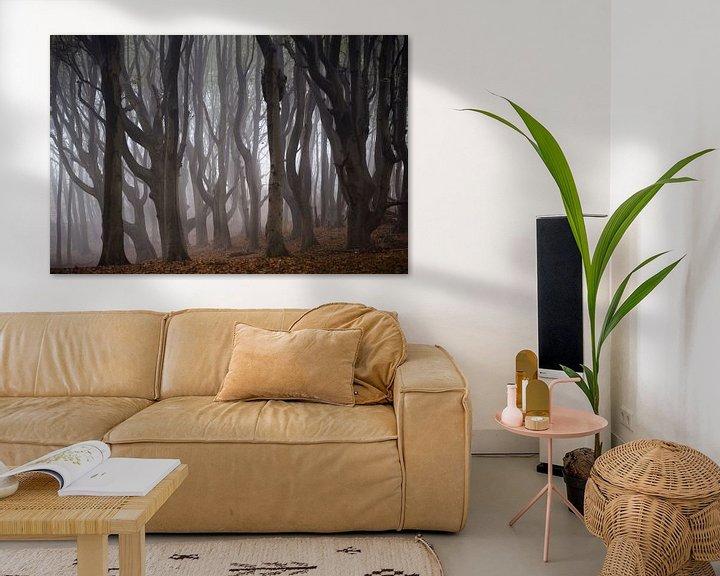 Sfeerimpressie: Kronkelende oude bomen in de mist van Bianca de Haan