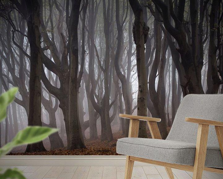 Sfeerimpressie behang: Kronkelende oude bomen in de mist van Bianca de Haan