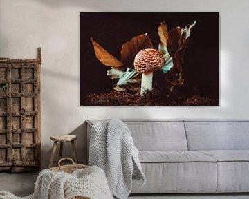 einsamer runder Fliegenpilz von Ribbi The Artist