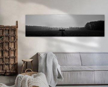 Photo en noir et blanc Munsterbos Belgique sur Tom De Peuter
