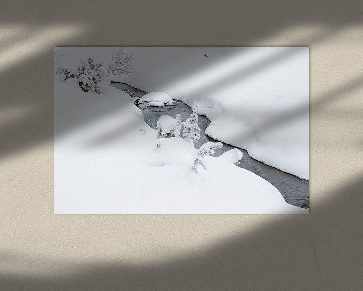 Sfeerimpressie: Waterspreeuw (Cinclus cinclus) in de winter van Beschermingswerk voor aan uw muur
