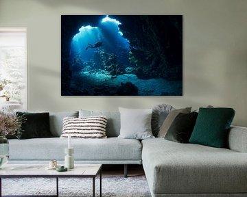 Een duiker in de mystieke kanalen van Shaab Claude van Norbert Probst